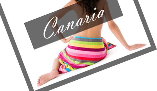 Canaria Textile Google Banner III